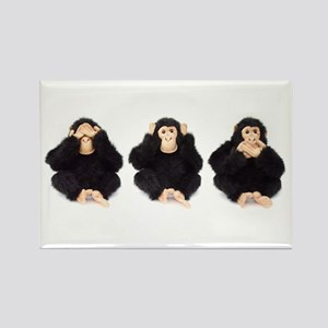 Hear, See, Speak No Evil Monkey Rectangle Magnet