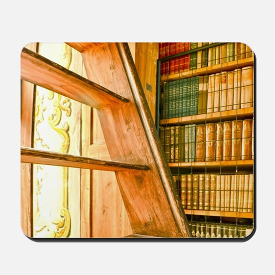 The library contains volumes hundreds of Mousepad
