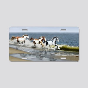 laptop_skin_Painted Ocean_R Aluminum License Plate