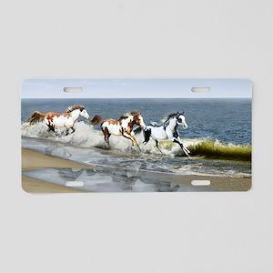 laptop_skin_Painted Ocean_R Aluminum License Plate