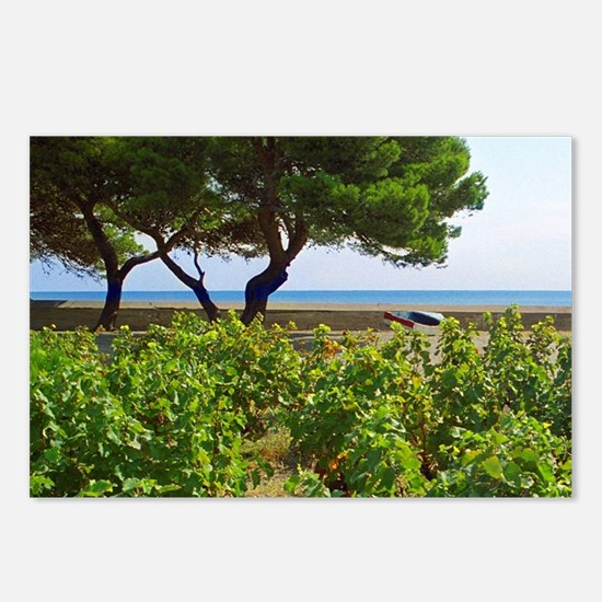 A vineyard in Collioure w Postcards (Package of 8)
