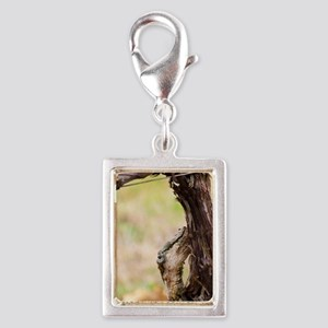 You top graft a new grape va Silver Portrait Charm