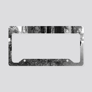 carrying water-photo-217-216  License Plate Holder