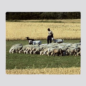 Shepherd with flock of sheep, wheat  Throw Blanket