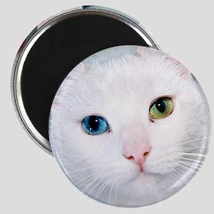 cat 1 Magnet