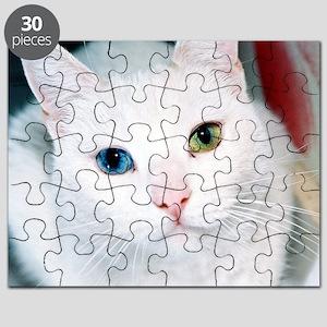 cat 1 Puzzle