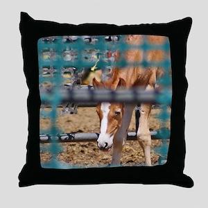 Cal_Oct Throw Pillow