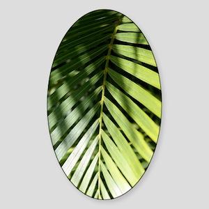 palmleafkindlesleeve Sticker (Oval)