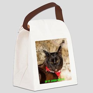 IMG_0298_TC_crop_cd_txt Canvas Lunch Bag