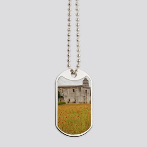 St. Remy-de-Provence. Outside of the St.  Dog Tags