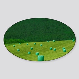 Haystack wrapped by plastic on farm Sticker (Oval)
