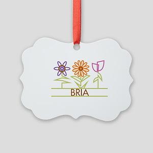 BRIA-cute-flowers Picture Ornament