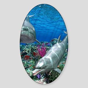 oceanworld_368_V_F Sticker (Oval)