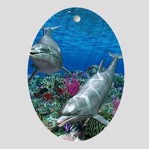 oceanworld_368_V_F Oval Ornament