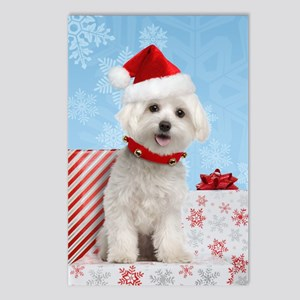 maltesechristmasfront Postcards (Package of 8)