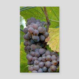 Harvest in the vinyard along  Rectangle Car Magnet