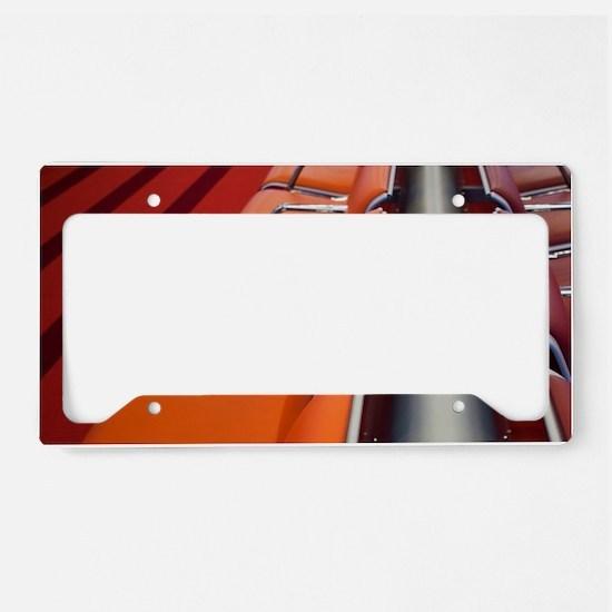 International departure areal License Plate Holder