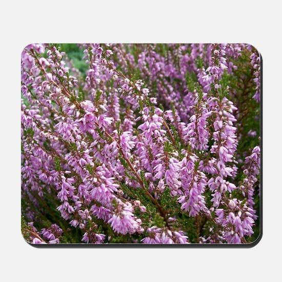 purple heather - wide version Mousepad