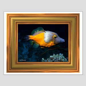 "Orange Spotted Filefish Poster   16""X20"""