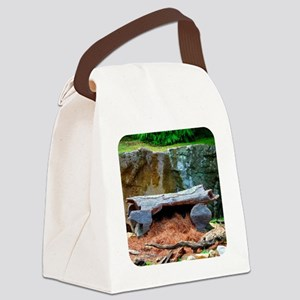 otdentote1 Canvas Lunch Bag