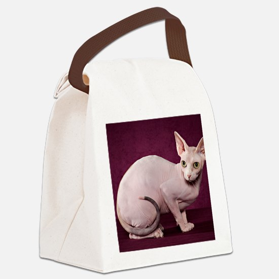 Sphynx10 Canvas Lunch Bag