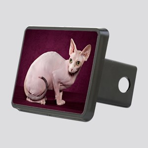 Sphynx10 Rectangular Hitch Cover