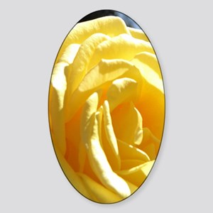 Yellow Rose.of Texas Sticker (Oval)