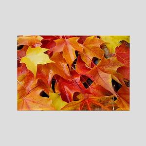 Autumn Leaves 69 Fall Art Colorfu Rectangle Magnet