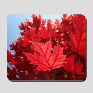 Autumn Leaves 7 Red Fall Art Trees Sunli Mousepad