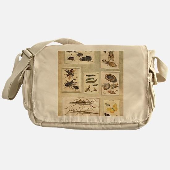Illustrations Messenger Bag