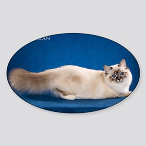 Birman Sticker (Oval)