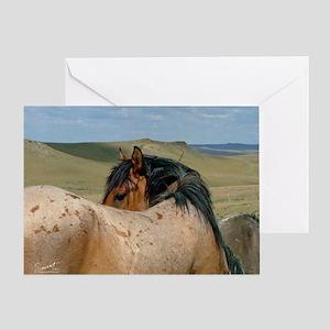 CP-calendar-RoanStallion1 Greeting Card