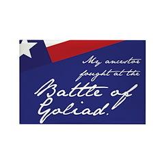 Battle of Goliad Rectangle Magnet (100 pack)