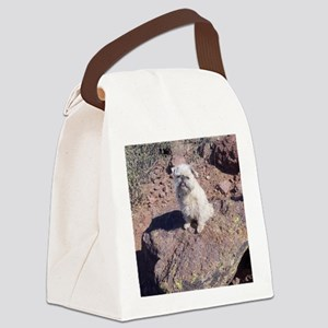 09-12 KathyMuffinVulture+Mountain Canvas Lunch Bag