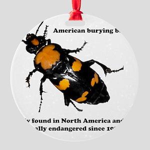 ABB endangered Round Ornament