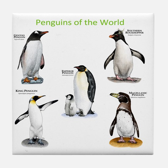 Penguins of the World Tile Coaster