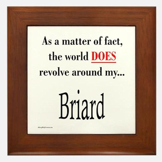 Briard World Framed Tile