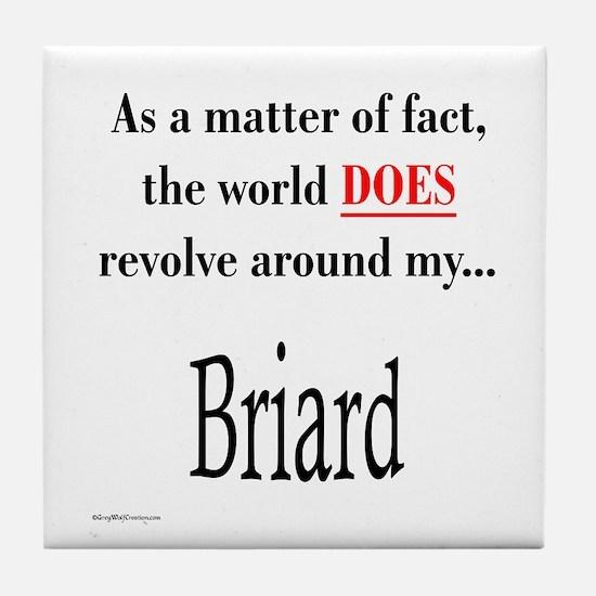 Briard World Tile Coaster