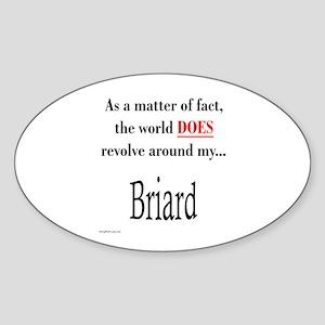 Briard World Oval Sticker