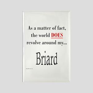 Briard World Rectangle Magnet