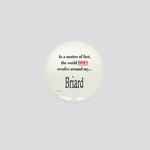 Briard World Mini Button