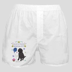 LabradoodleBlack Boxer Shorts