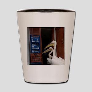 Hora. Two pelicans going in back door o Shot Glass