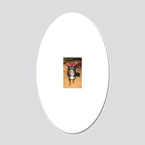 IMG_0546_DA_crop_tall 20x12 Oval Wall Decal