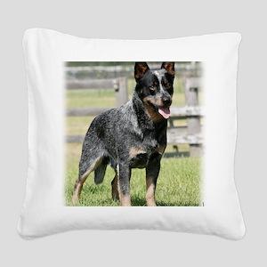 Australian Cattle Dog 9Y749D- Square Canvas Pillow