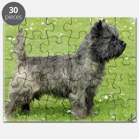 Cairn Terrier 9Y004D-024 Puzzle