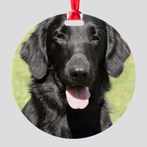 Flat Coated Retriever 9Y040D-040 Round Ornament