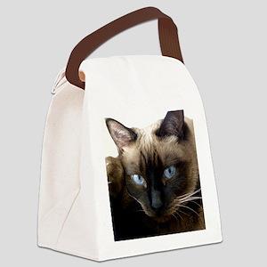 Pixie Feb 6 2010 Canvas Lunch Bag