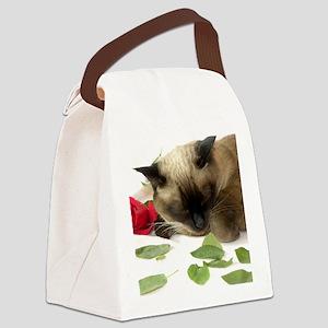 V Day 2010 (6) Canvas Lunch Bag