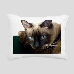 Pixie Feb 6 2010 Rectangular Canvas Pillow